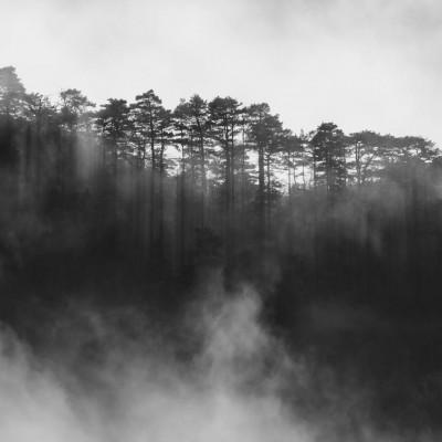 Lever de brume